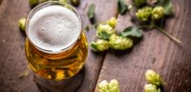 رازک، راز کیمیاگری آبجو